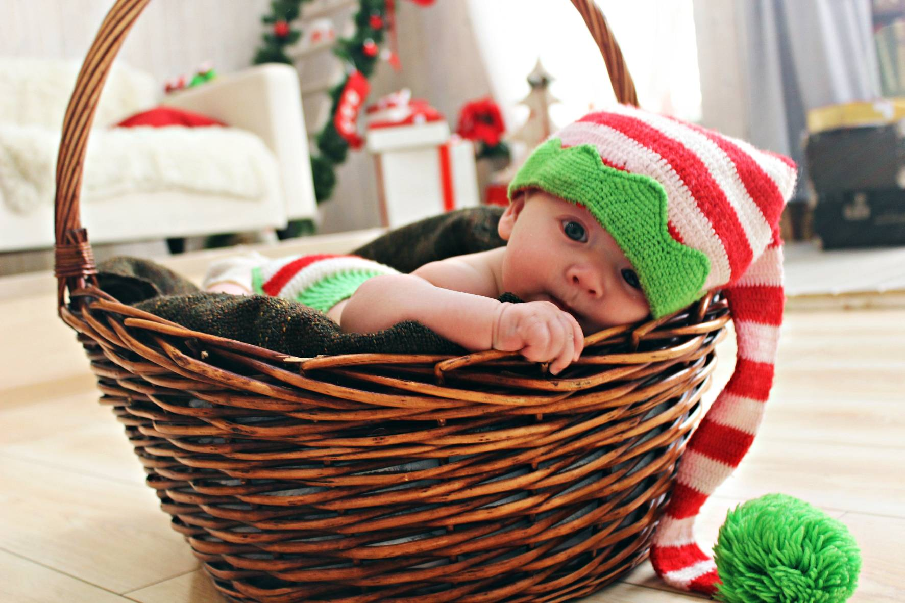 adorable-baby-basket-265981 (1)